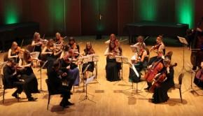 Orkiestra_Kameralna_2014-15_www mniejszy