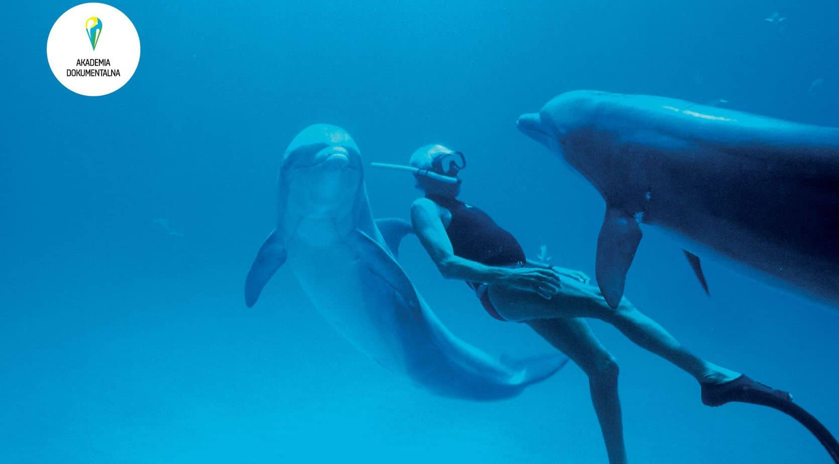 kadr filmowy człowiek delfin
