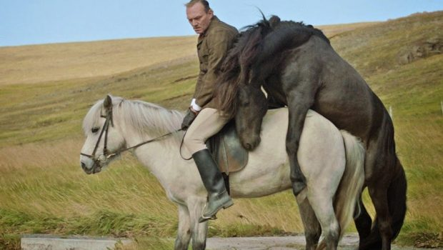 kadr filmowy o koniach i o ludziach